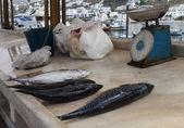 View of Mykonos Market — Stock Photo