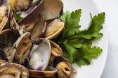 Steamed clams — Stock Photo
