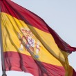 Spanish Flag — Stock Photo #27700821