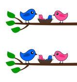 A family of birds — Stock Vector