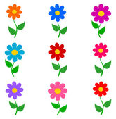 Flowers with different colors — Wektor stockowy