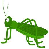 A green grasshopper — Stock Vector