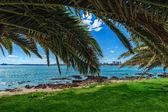 Pláž a tropickou pláž — Stock fotografie
