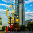 Puerto Madero Crane — Stock Photo #21583681
