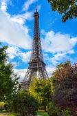 Eiffel Tower, Natural Frame — Stock Photo