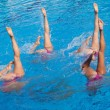 Synchronized swimmers legs movement — Stockfoto #23734071