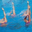 Стоковое фото: Synchronized swimmers legs movement