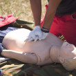 Stock Photo: First aid training