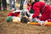 Treinamento de primeiros socorros — Fotografia Stock