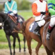 Stock Photo: Horse racing