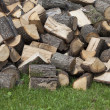 Pile of logs — Stock Photo #24719317