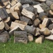 Stock Photo: Pile of logs