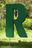 Green letter r — Stock Photo