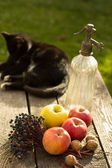 Apples on wooden table over autumn bokeh background — Stock Photo