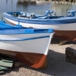 Freshly painted fisherman boats — Stock Photo