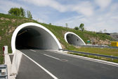 Tunnels on four lane highway — Stock Photo