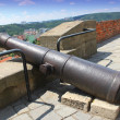 Old cannon fortress above the city of Brno in Czech Republic, castle Spilberk - Stock Photo