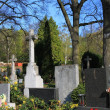 Stock Photo: Cemetery in Czech Republic city Brno