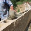 Bricklayer builds a wall - Stock Photo