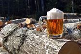 Felled trees, relax after work, drinking beer — Stock Photo