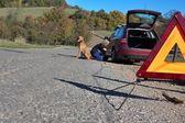 En ung flicka försöker reparera trasiga bil på en öde väg — Stockfoto
