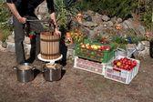 Man producerar äppeljuice, hemlagad frukt pressning, höst i trädgården — Stockfoto