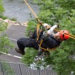 Stock Photo: Rescuer on rope, exercise special police units, real situation, Czech Republic, city of Kadan