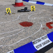 Crime scene — Stock Photo #22709311