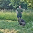 Stock Photo: Mmowing tall grass