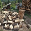 Stock Photo: Firewood, preparing for winter