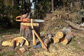 Brandhout, winter voorbereiden — Stockfoto