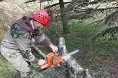 A lumberjack working with a chainsaw, (Betula) — Stock Photo