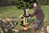 Preparing the wood for the winter, splitting, betula — Stock Photo