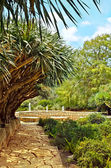 Beautiful Rothschild Gardens (Park Ramat Hanadiv) — Stock Photo
