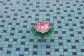 поддельные цветок в бассейне — Стоковое фото