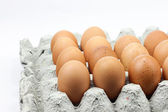 Chicken eggs in egg container — Stock Photo
