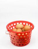 Chicken eggs in plastic container — Stock Photo