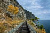 Autumn on the Circum-Baikal railway — Stock Photo