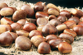 Brown chestnuts — Foto Stock