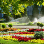 Lawn watering sprinkler — Stock Photo