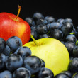 Fruits on black — Stock Photo