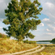 Country road to the river — Stockfoto