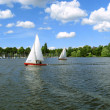 Stock Photo: Sailboats