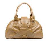 Female leather bag — ストック写真