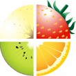 Fruits — Stockvector #21348615