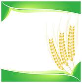 小麦の抽象的な背景 — ストックベクタ