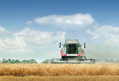 Combine harvester — Stock Photo