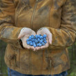 图库照片: Blue sweet berry in hand