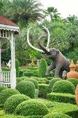 Tropical garden design — Stock Photo