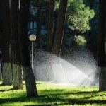 podlewania zraszania trawnika — Zdjęcie stockowe